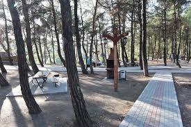 Bursa Deniz Kenarı Piknik Alanları
